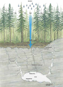 Cross Section of Karst - Image from BC Ministry of Forests (1997)