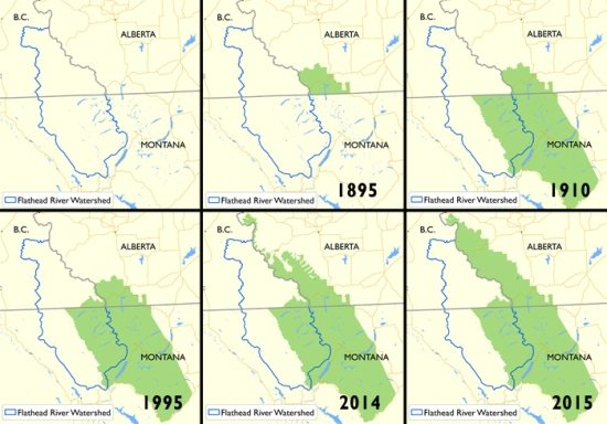 The progression of new protected area designations in the Southern Rockies – only a small portion of the Flathead's Canadian half has been protected, in Akamina-Kishenina Provincial Park.