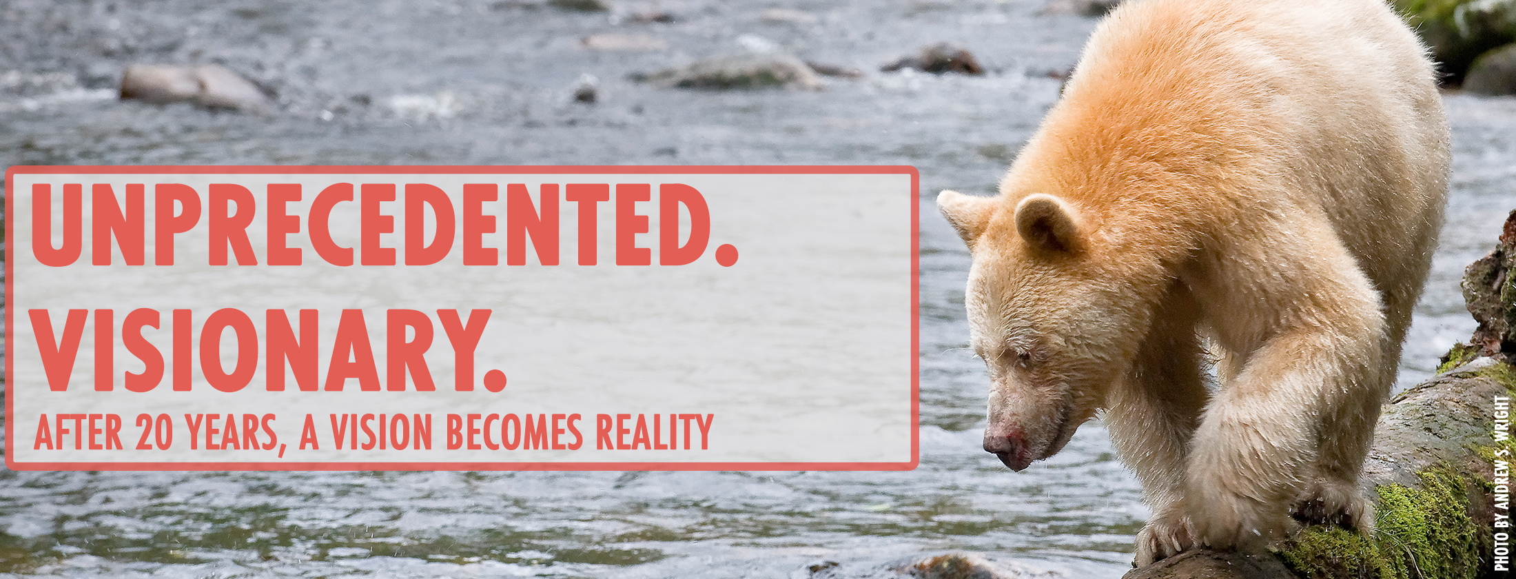 Unprecedented.Visionary.Great Bear Rainforest
