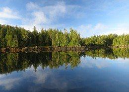 Great Bear Rainforest landscape