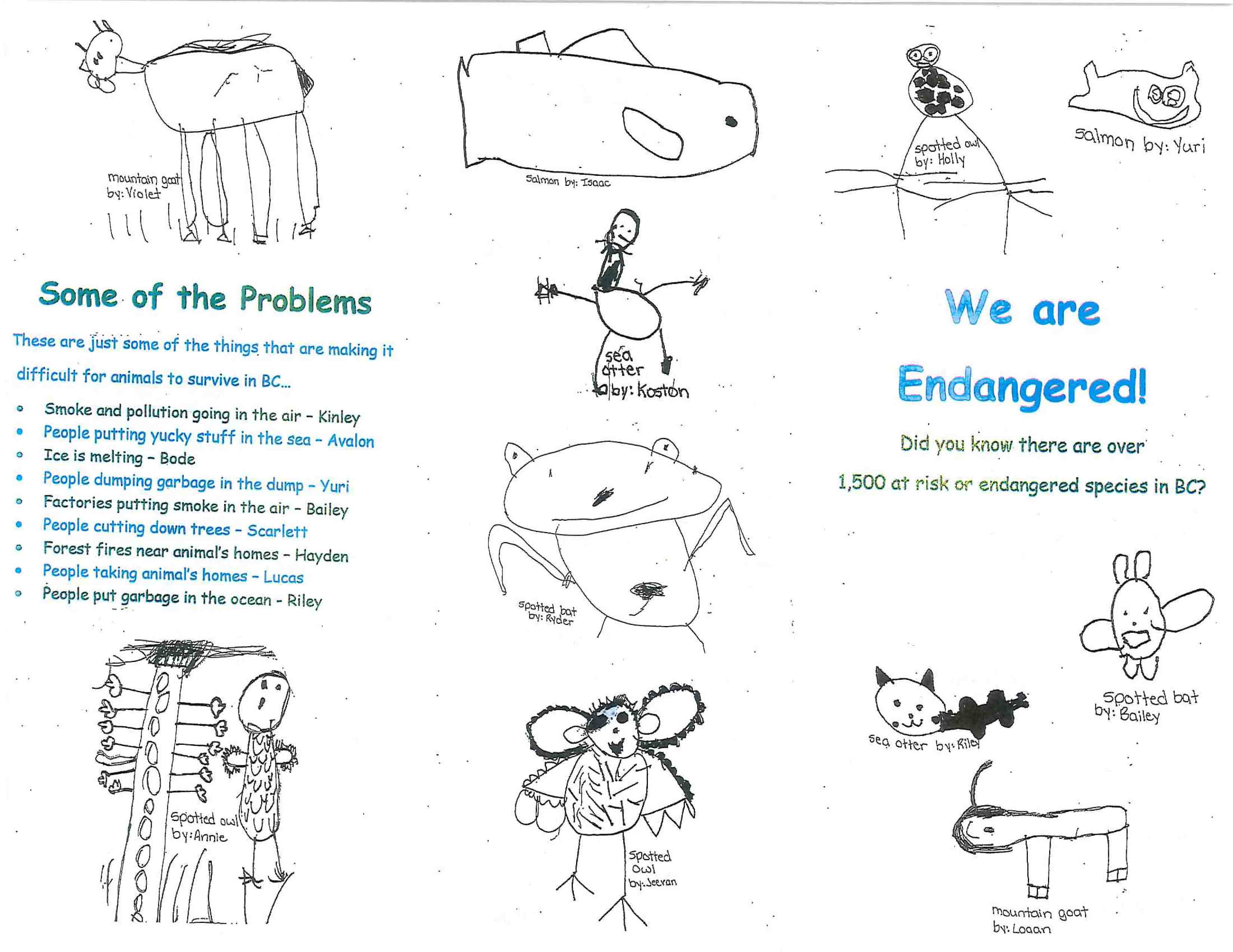 endangered-species-brochure_mrs-bowleys-kindergarten-class-at-brackendale-elementary-1