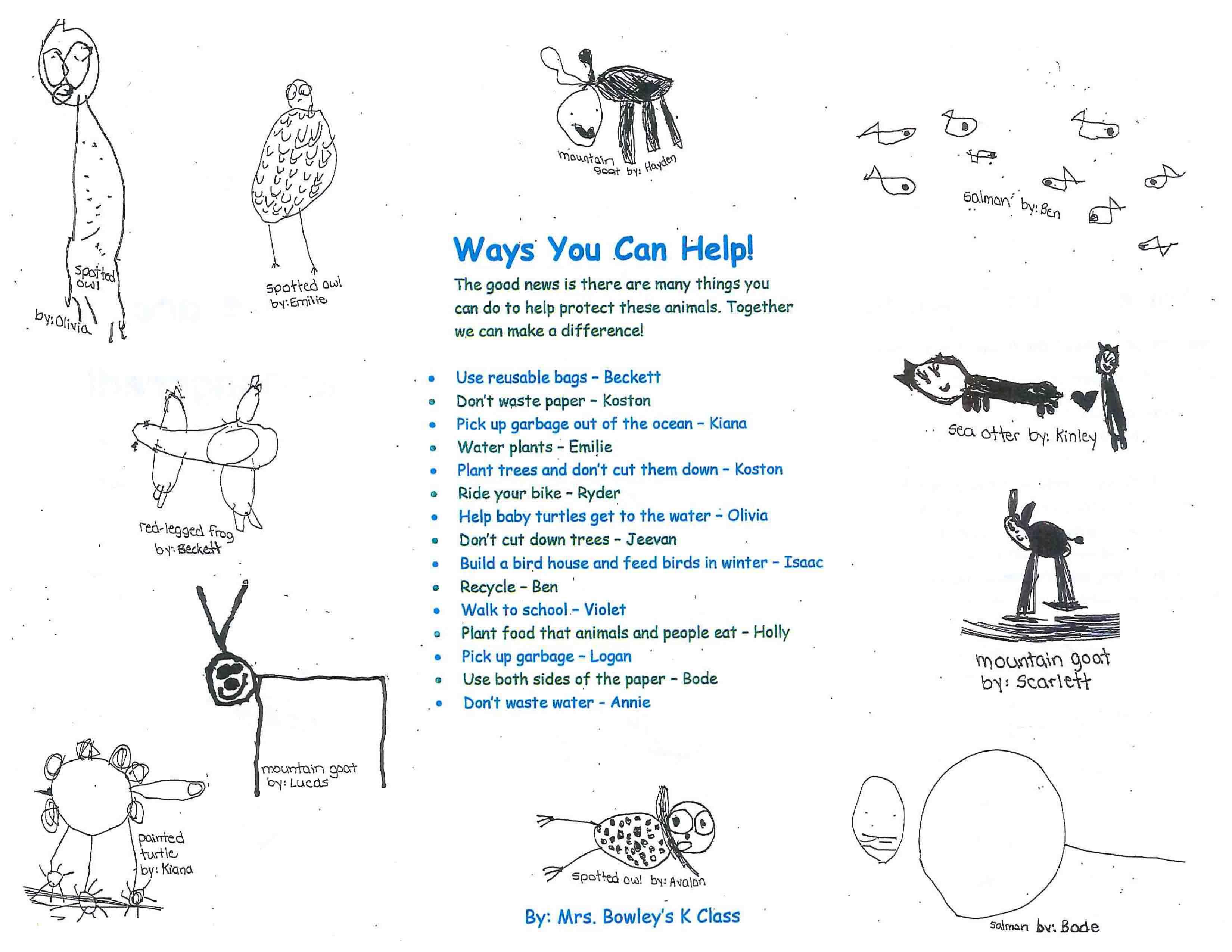 endangered-species-brochure_mrs-bowleys-kindergarten-class-at-brackendale-elementary-2