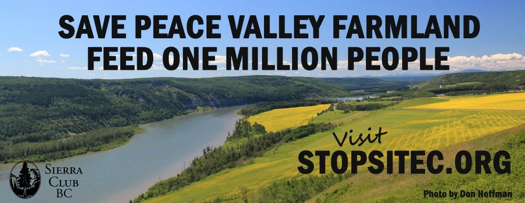 Site C Billboard on Hwy 1