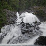 Walbran Waterfall