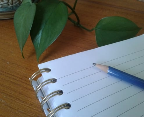 A pencil and notebook at the ready for the latest creative writing project!