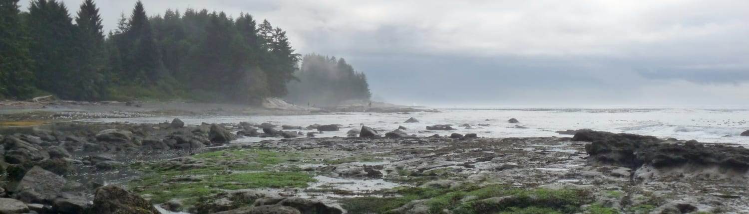 botanical beach, beach, sierra club bc, ocean, coastal, beaches, vancouver island