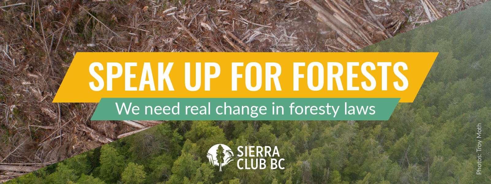 Speak up for forests