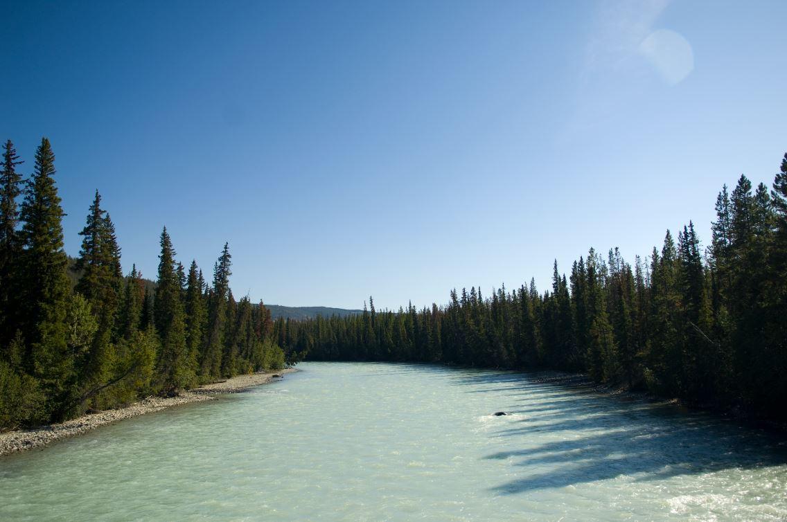 A creek near Fish Lake, BC