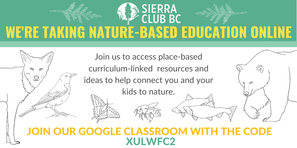 Join our nature-based Google Classroom for tons of educational activities!