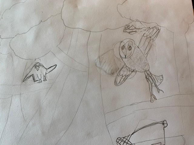 Grade 1 Student's drawing