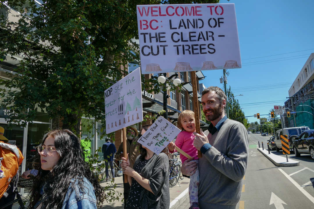 victoria, save old growth, day of action