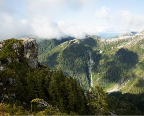 tofino, tofino wilderness resort, vancouver gala, sierra club bc vancouver gala