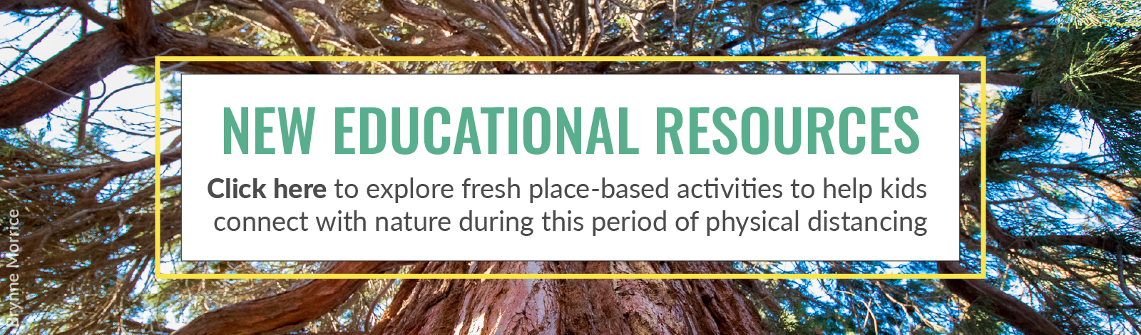 Explore place-based educational activities to connect your kids with nature